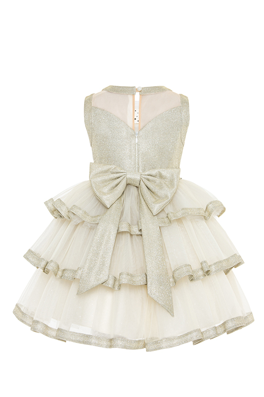 2/6 Years Girl Sivery Fabric Collar Detailed With Stone Printing On Tulle Gold Dress