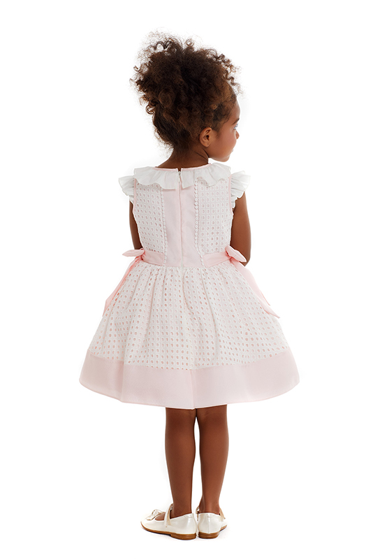 2/6 Years Girl's Embroidered Fabric Detailed Powder Dress